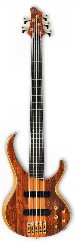 String Bass Guitar