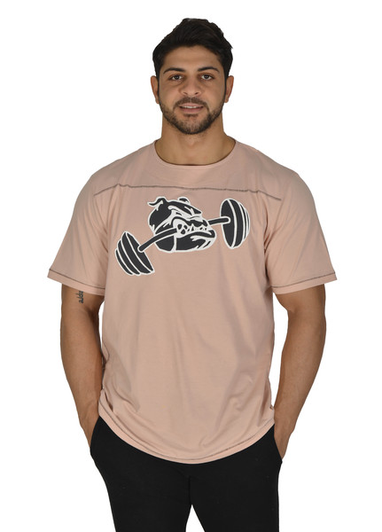 Men T-shirt Fitnees Rag-Top Big Sam *3207*