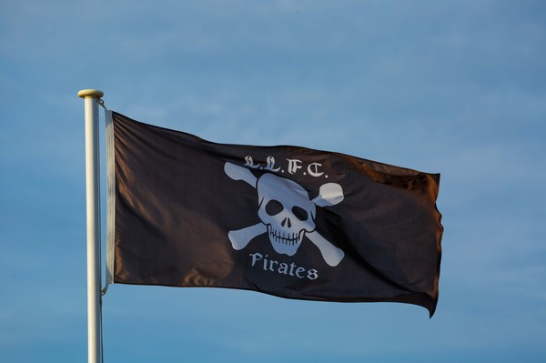 Pirates Flag (900mm x 1800mm)