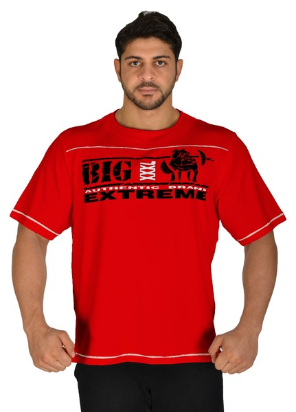 Fitness Training Workout T-shirt Big Sam *3225*