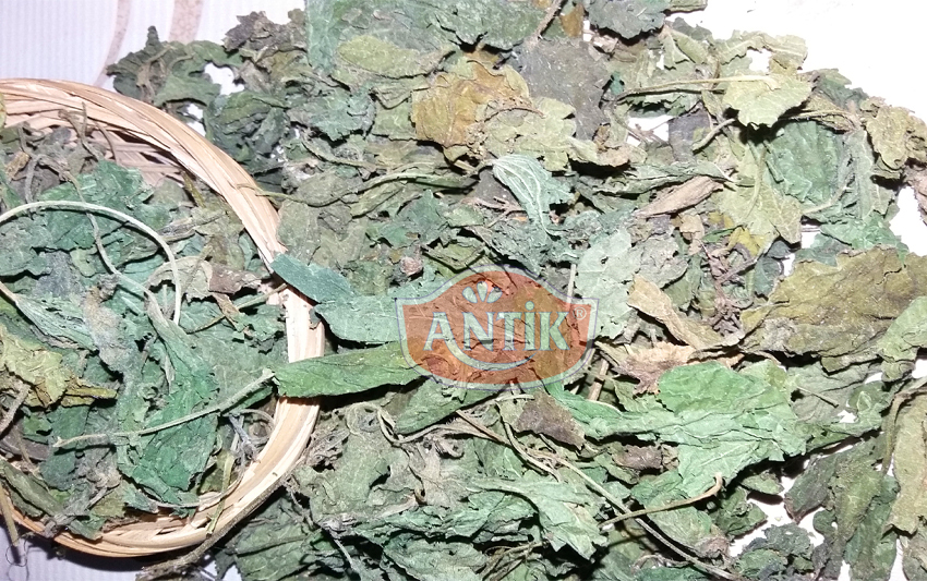 Dried Linden Leaf 100 gr