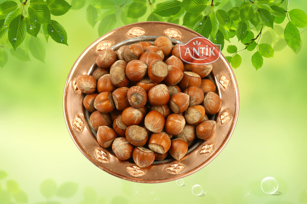 Hazelnut in Shell 500 gr